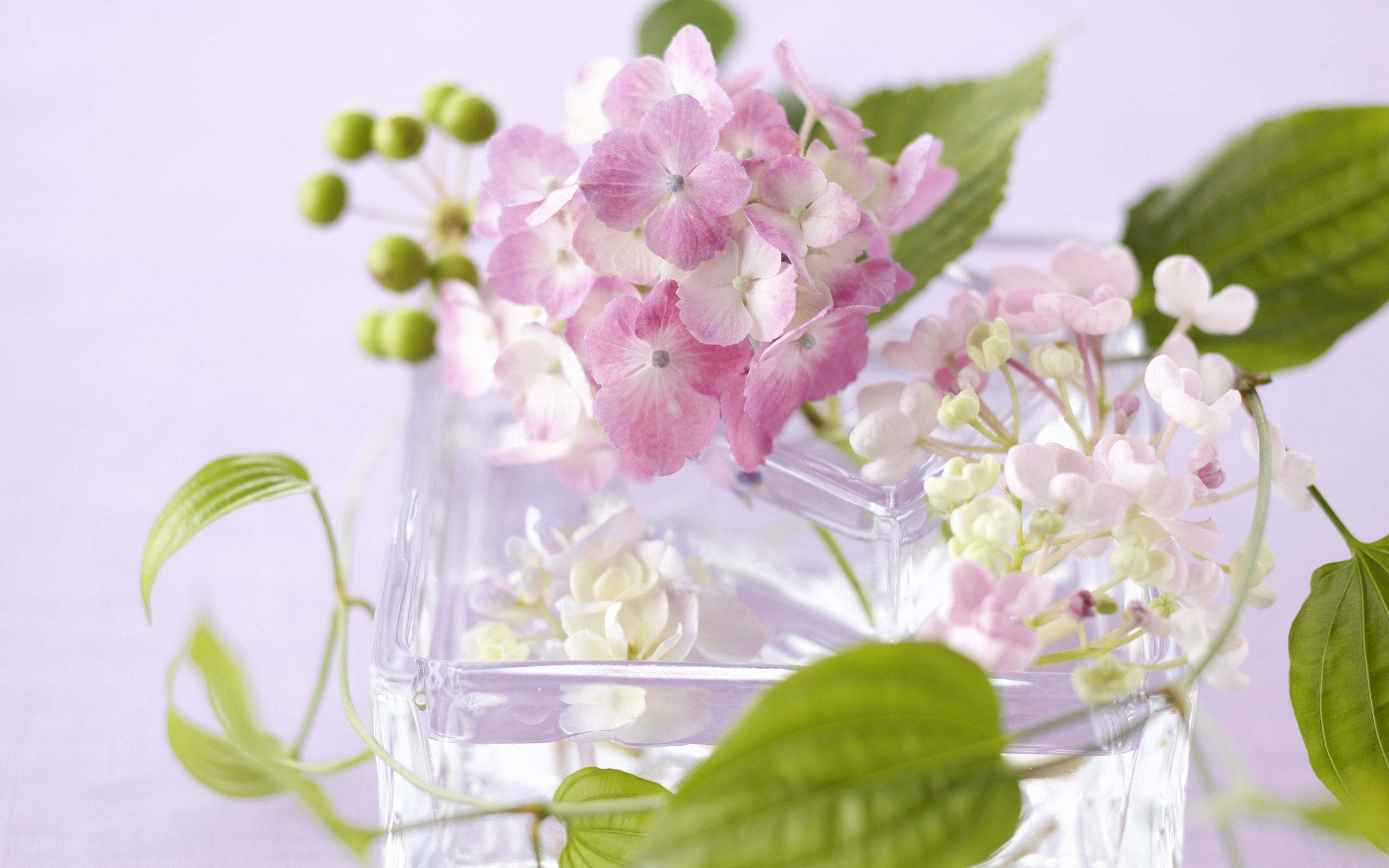 Anyák napja – A(z online) virágárusok ünnepe