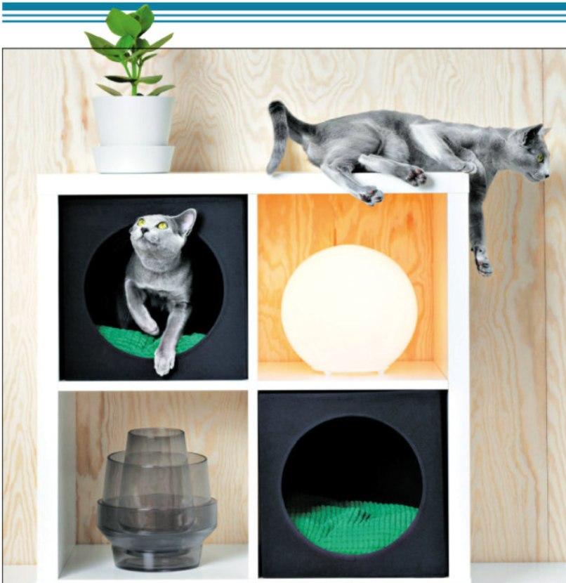 IKEA, most már macskáknak is