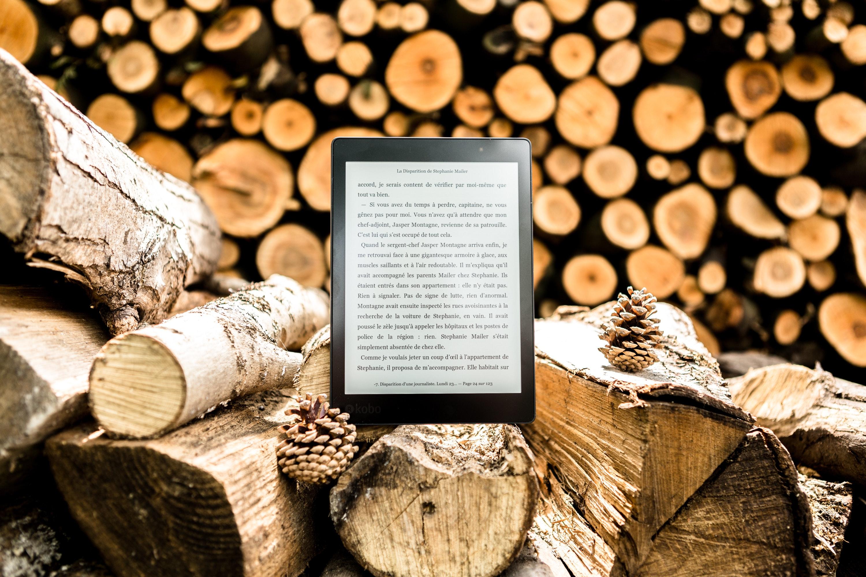 Ingyen e-könyvet kapnak a Dibook Olvasók Klubjának tagjai
