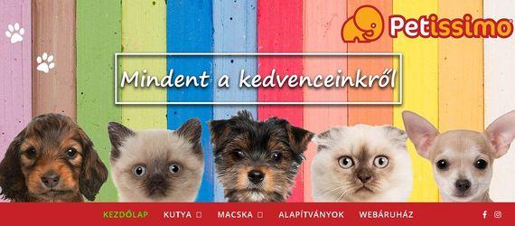 Webáruházak – Kutyákra és cicákra hangolva