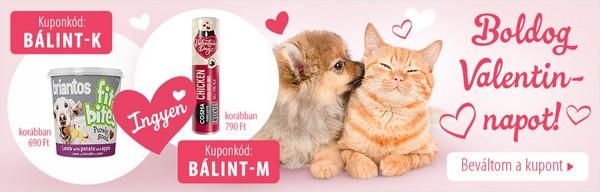 Zooplus Valentin-nap – ❤ Valentin-napi ajándék kedvencének ❤